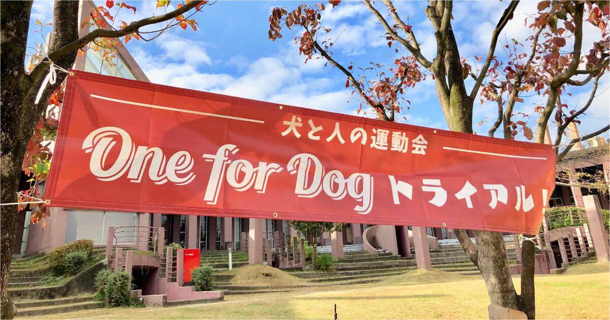 犬と人の運動会