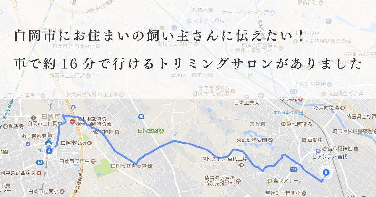 埼玉県白岡市内から車で約16分にある宮代町のトリミングサロンです