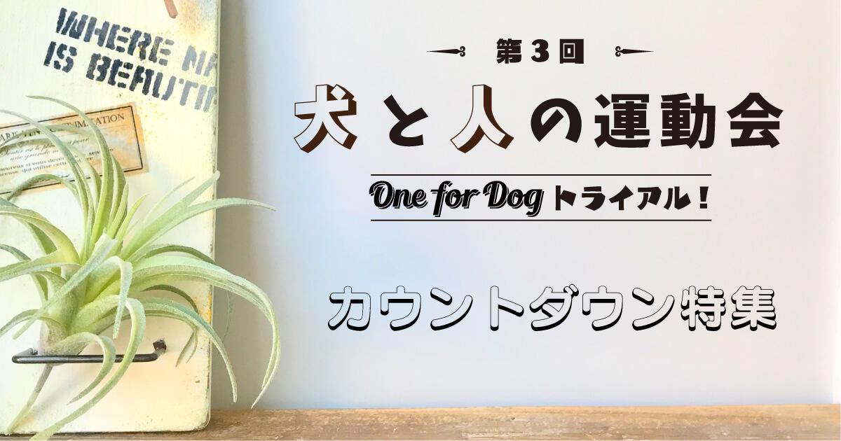 犬と人の運動会「第3回 One for Dog トライアル!」カウントダウン特集
