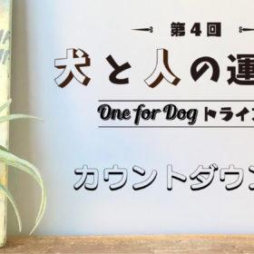 犬と人の運動会「第4回 One for Dog トライアル!」カウントダウン特集