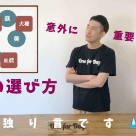 """オンラインセミナーVo.4【犬を飼う前に知っておきたいこと】""""犬種"""""""