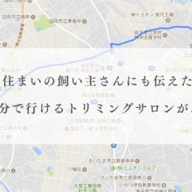 埼玉県蓮田市内から車で約20分にある宮代町のトリミングサロンです