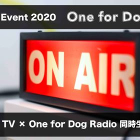 One for Dog Live !