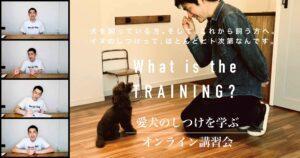 愛犬のしつけを学ぶオンライン講習会