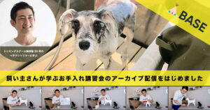 愛犬のお手入れを学ぶオンライン講習会